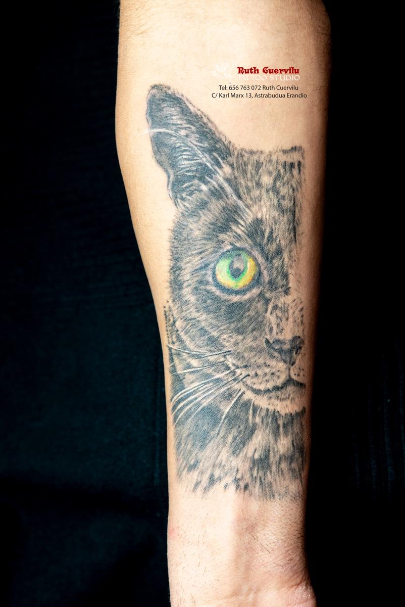 Ruth Cuervilu Tattoo - KM13 Studio - Gato somavilla curado